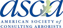 ASCA - Tree Service Consulting Arborists