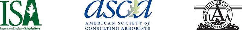Certified Arborist Designations